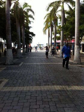 Der Private Eye auf Sint Maarten unterstützt die Observation der DSD Detektiv SYSTEM Detektei ® GmbH im Raum Philipsburg. Bildrechte: DSD Detektiv SYSTEM Detektei ® GmbH / Randel