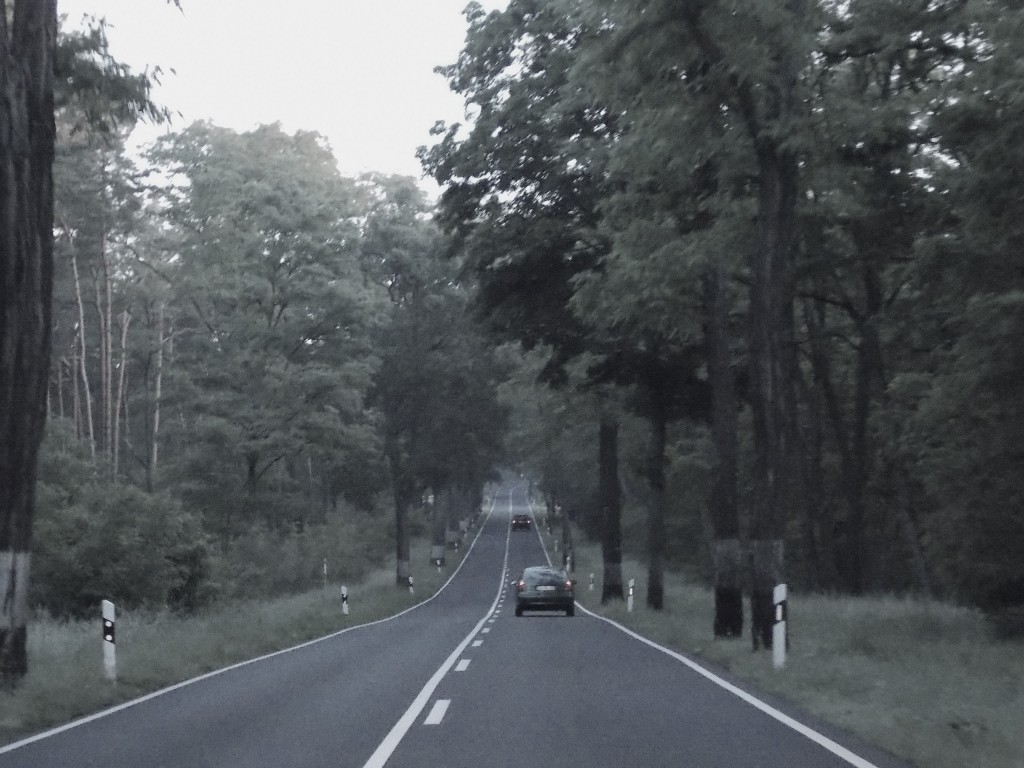 Mobile Detektei-Observation im Landkreis Potsdam-Mittelmark
